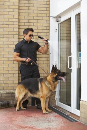 Security man with k9 dog